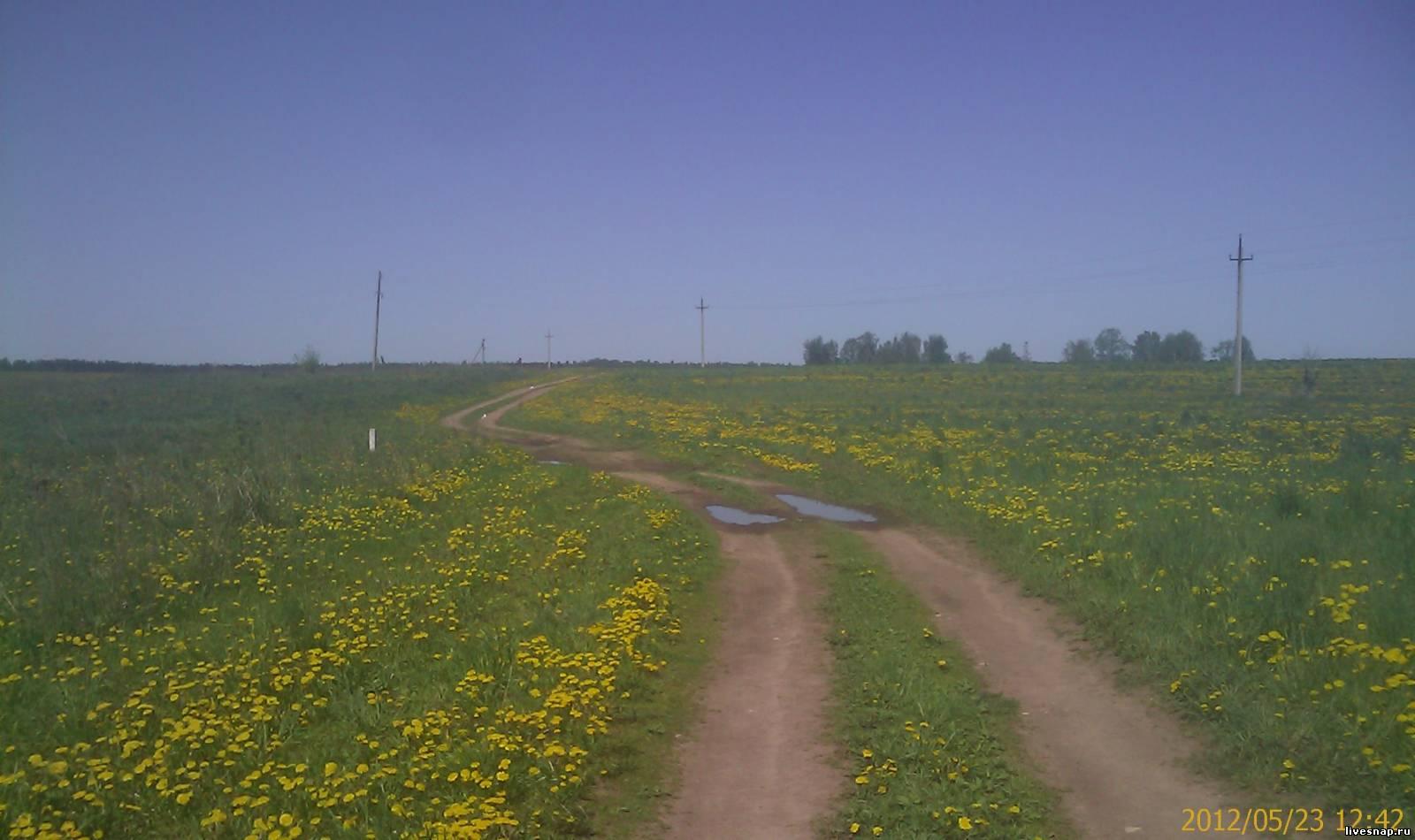 дорога Деревня Вышний волочек