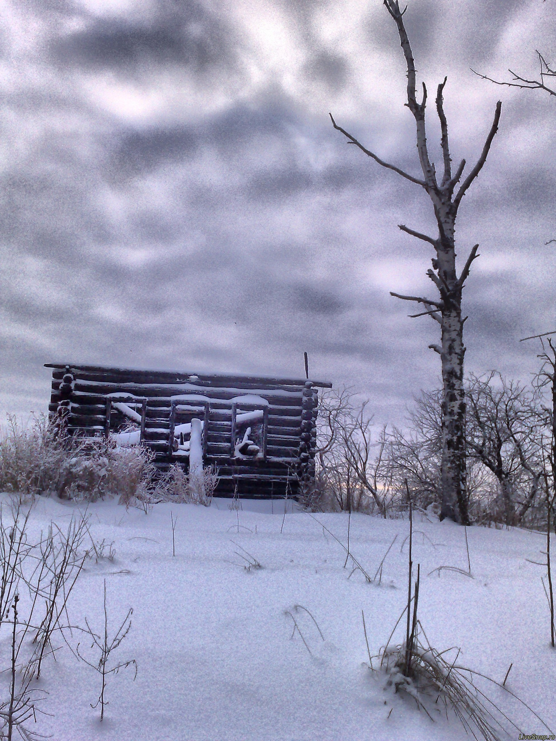 горел дом  Деревня