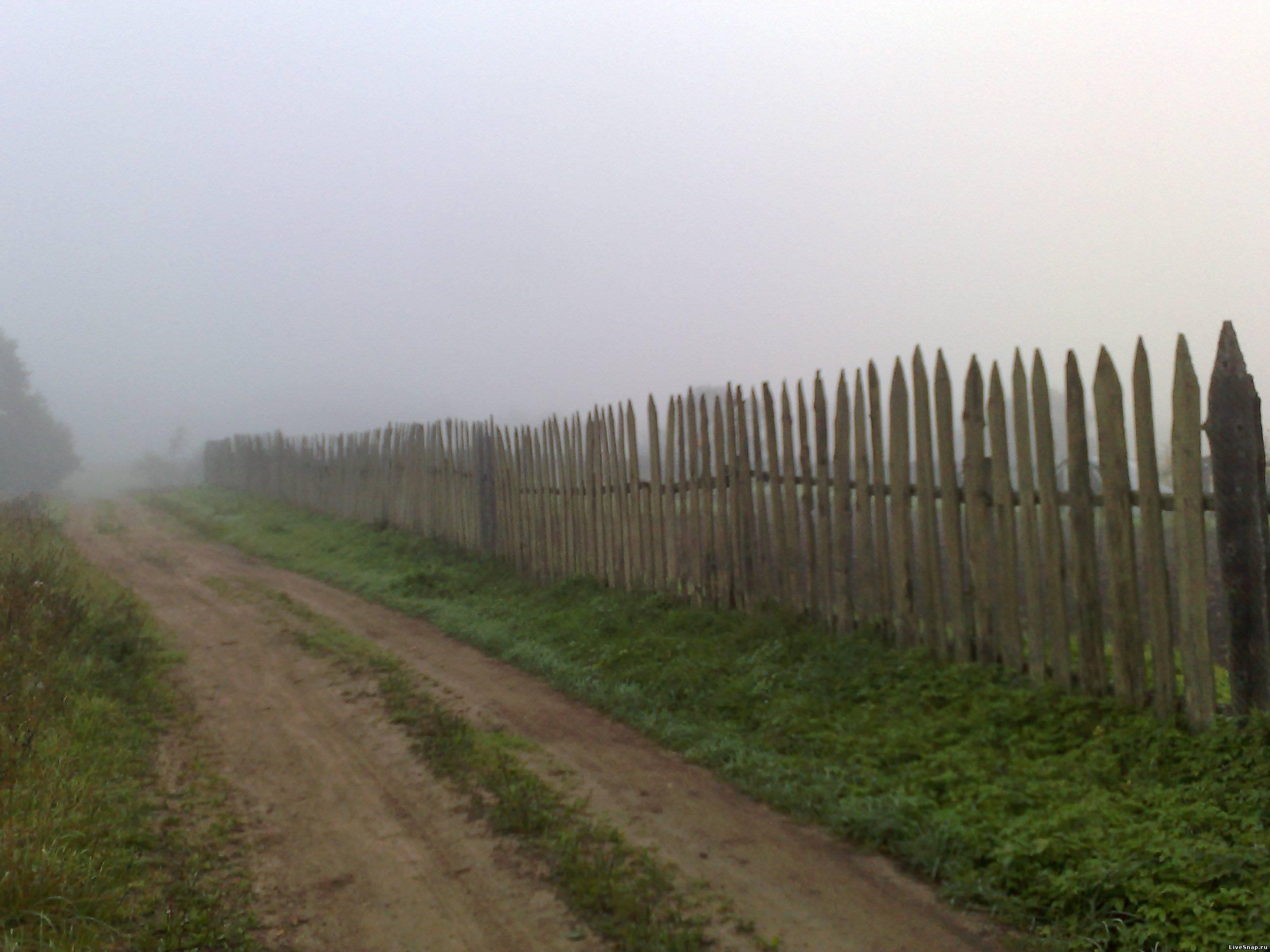 туман в деревне  Деревня