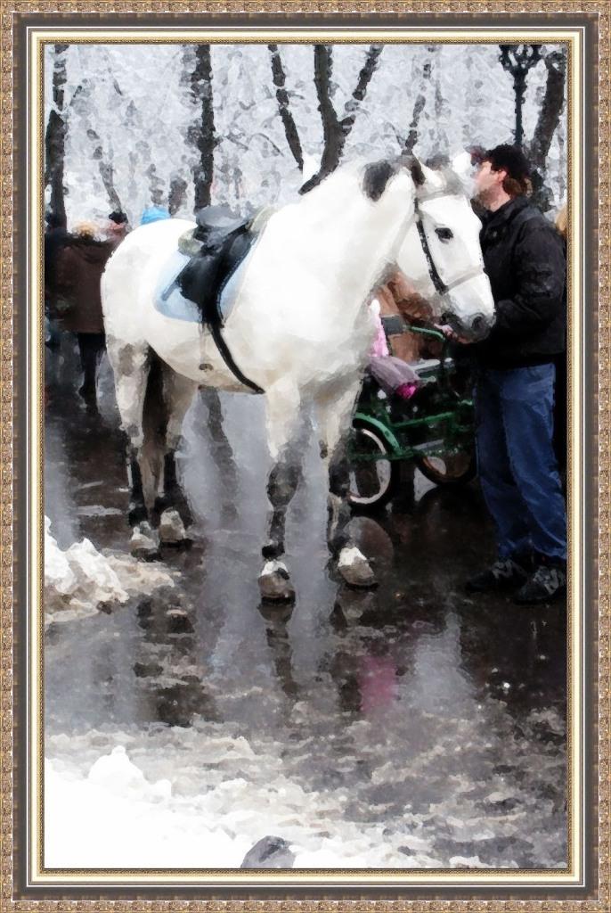 белая лошадь  Зверюшки
