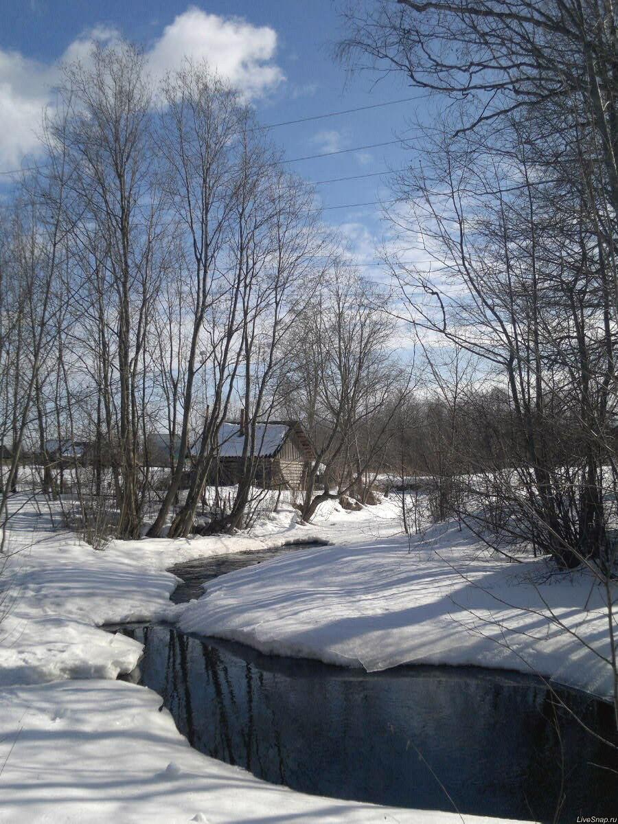 23 февраля  Природа