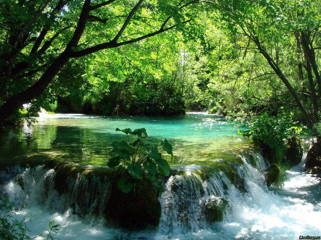 водопадик  Природа