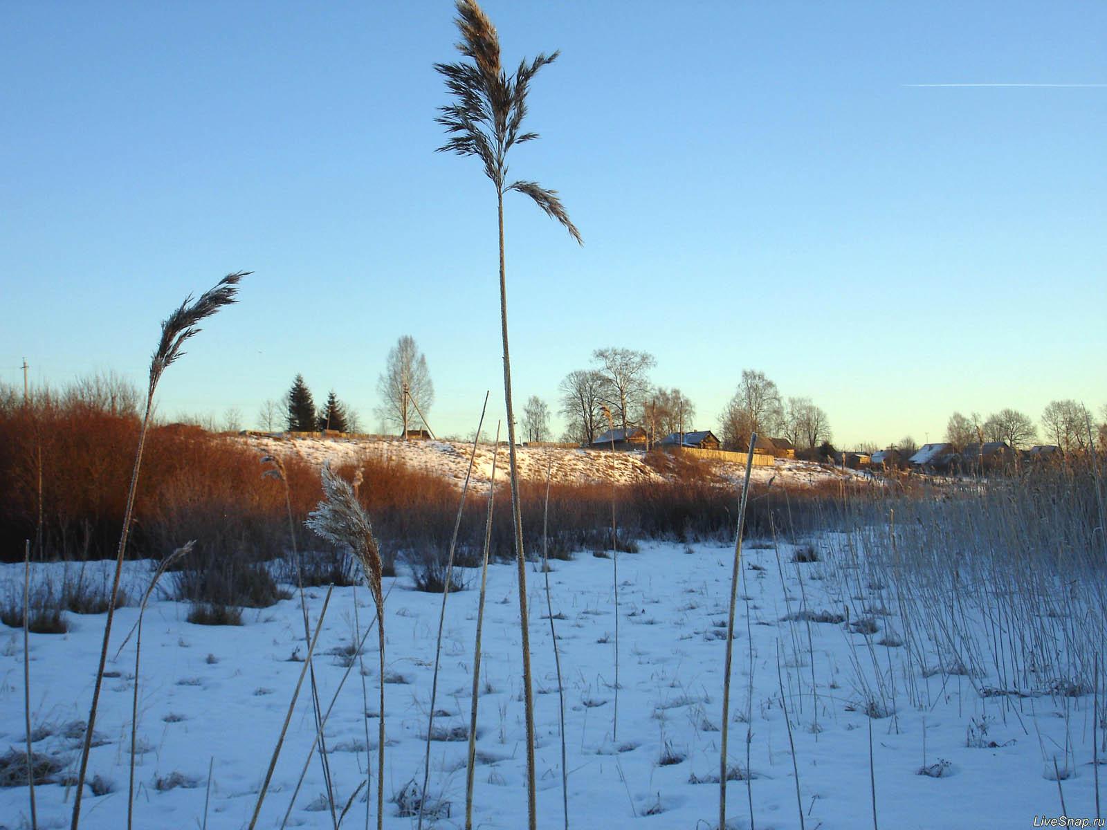 вид на деревню от озера  Деревня