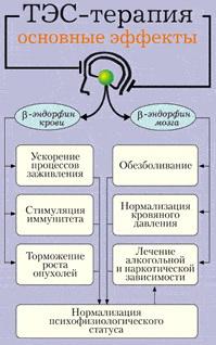 Частоты и человек
