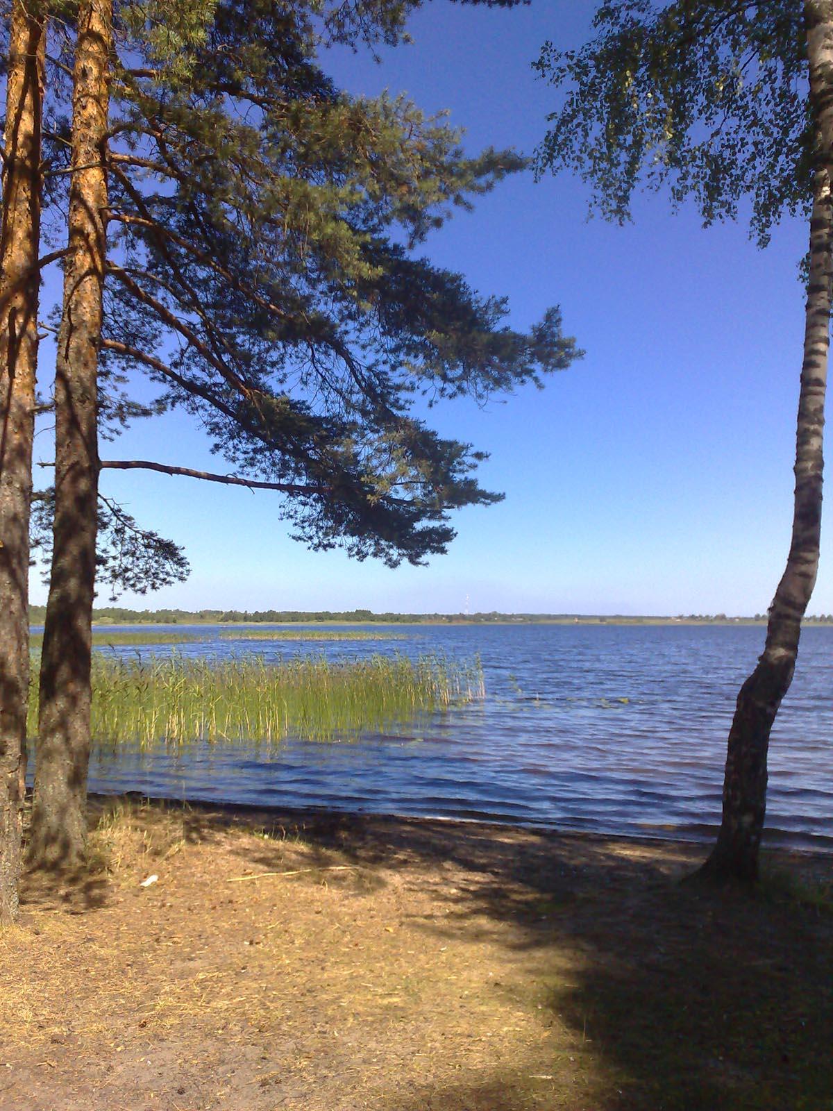 чистое небо  Природа