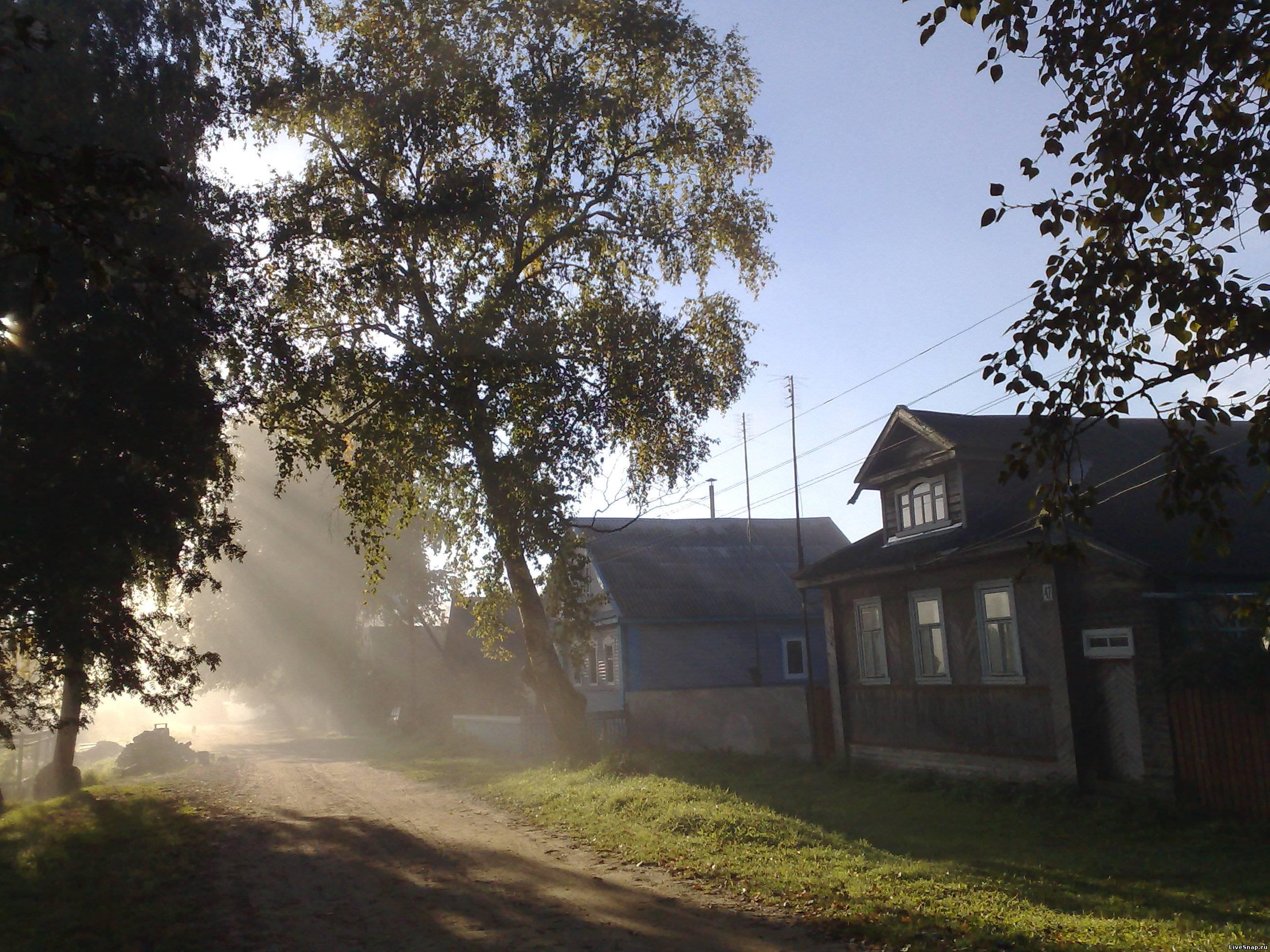 Cолнце из деревьев  Деревня