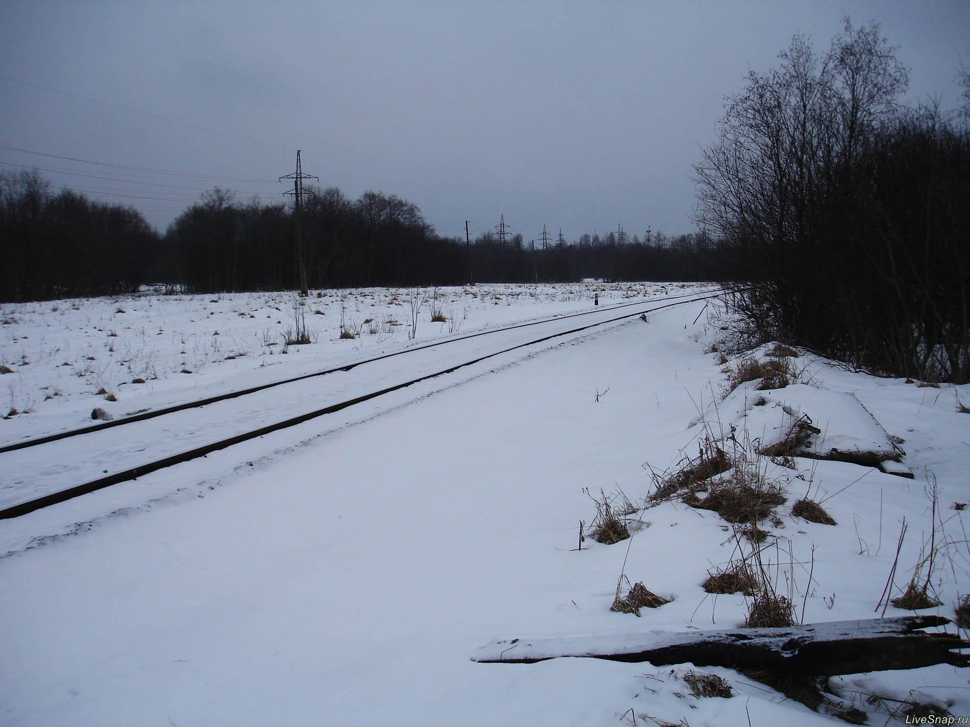 пасмурно зимой  Деревня
