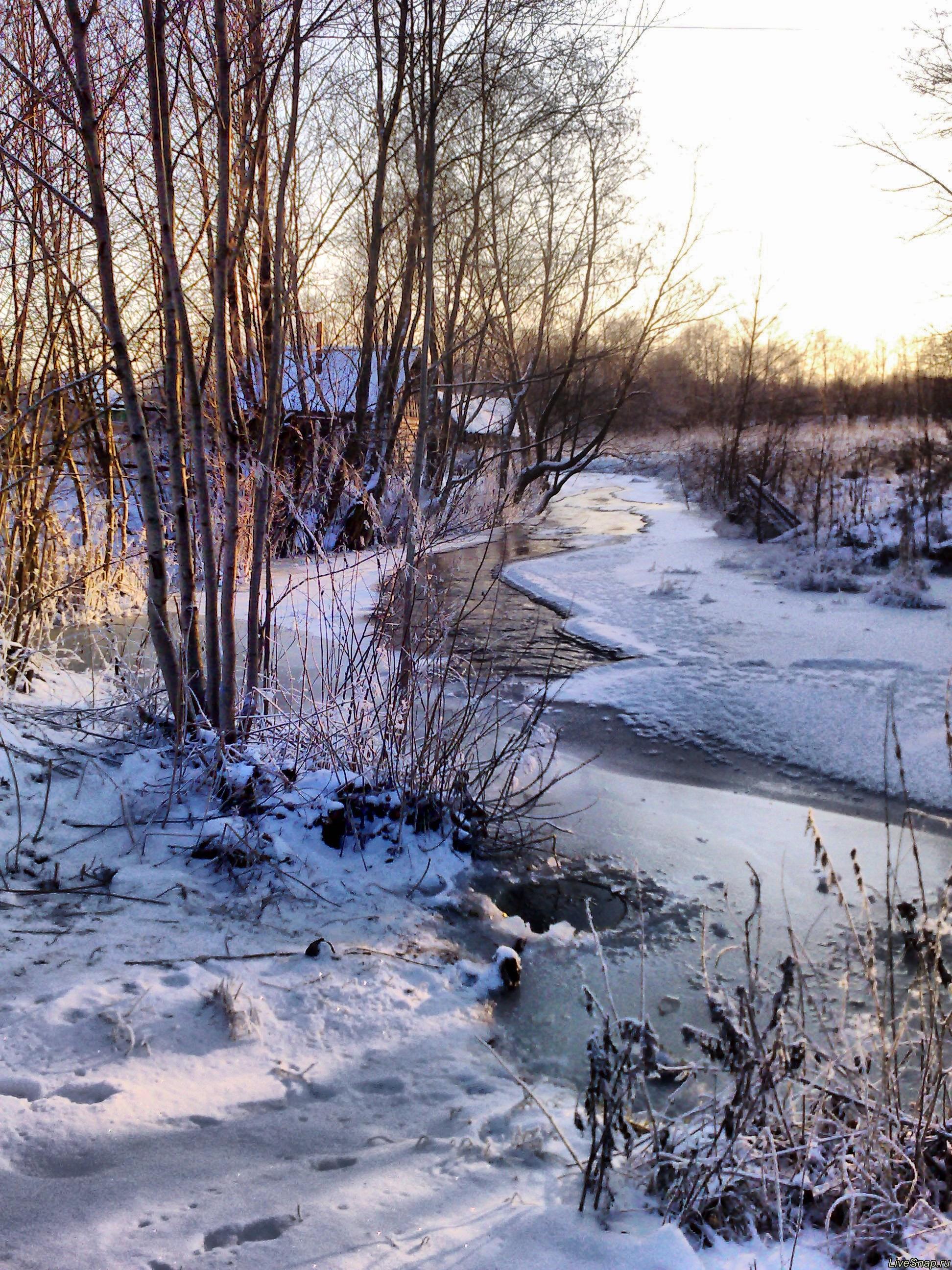река Барыга Природа
