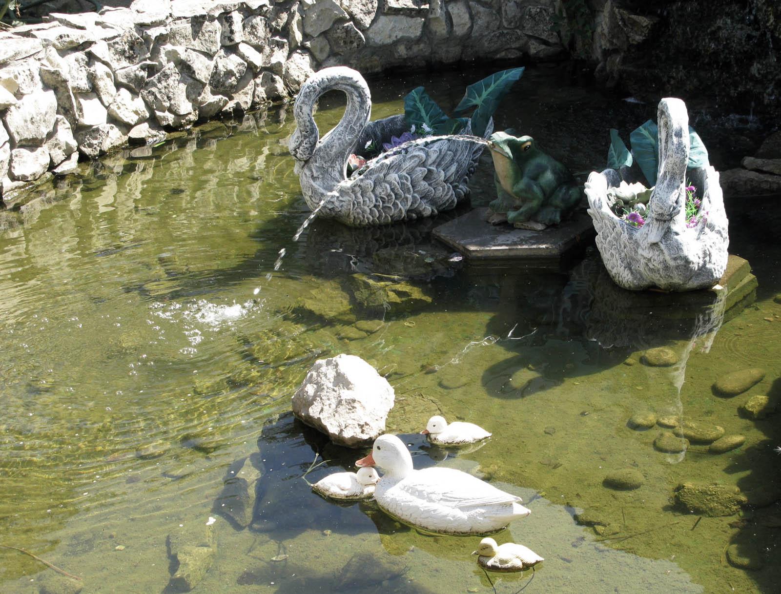 утки в фонтане  Зверюшки
