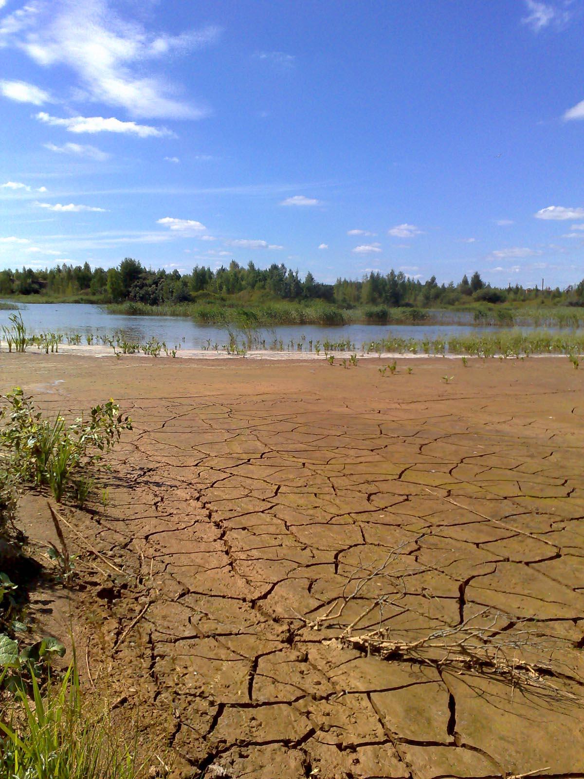 засуха  Природа