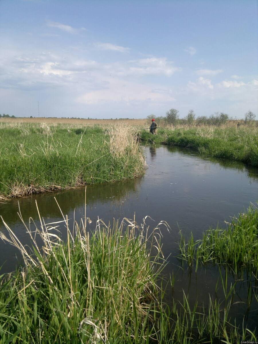 рыбак на речке  Природа
