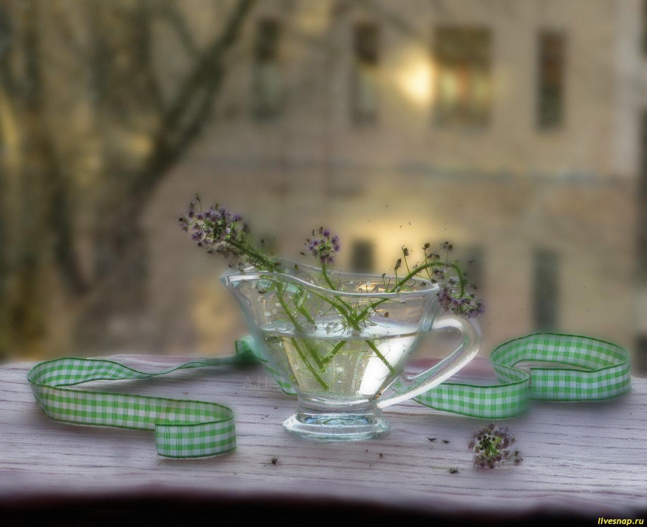 malenkie-cvetochki